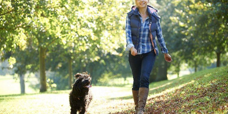 Компенсация нормы ежедневной нагрузки на ноги